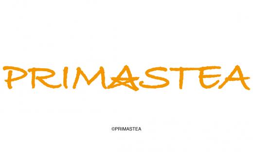 プリマステア ブランドロゴデザイン